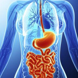 Що лікує гастроентеролог?